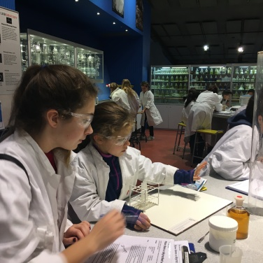 This could be a poster for 'Get girls into science' - the fab lab at NEMO