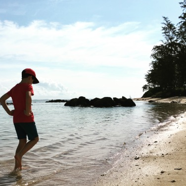 Beach life ...