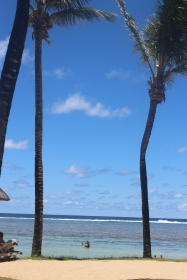 Palm trees framing the Indian Ocean (that surf is the edge of the reef, just like in Moana)
